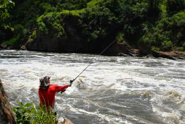 Lure for Nile Perch at Murchison Falls, Uganda, Africa, catching Nile Perch on crankbait minnow
